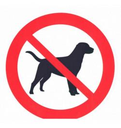 Lipdukas Draudžiama įeiti su šunimis 15x15cm