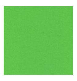 Spalvotas popierius A2 žalias