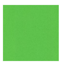 Spalvotas vatmanas A1 žalias